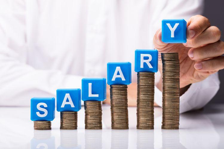 BPO MNC KPO Salary
