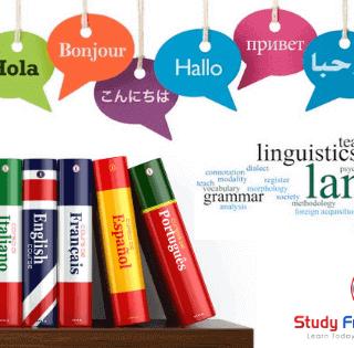 Foreign language Teachers